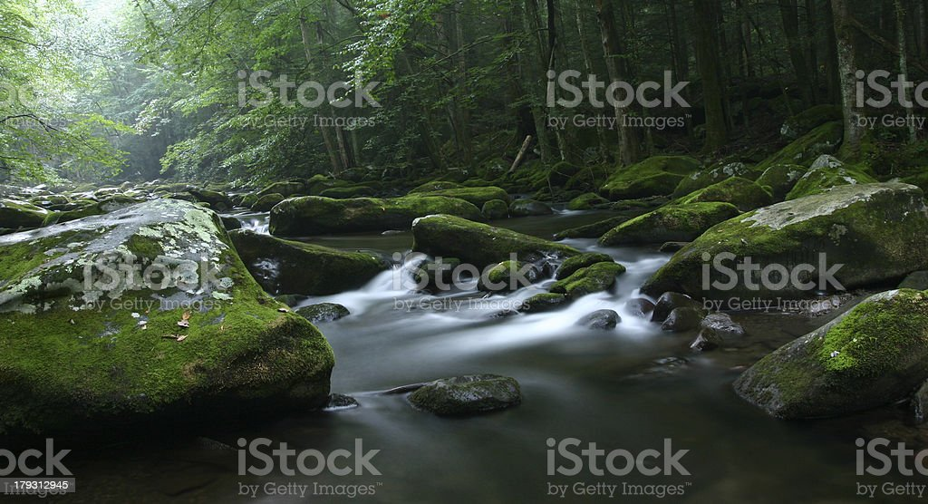 Evening on Middle Prong royalty-free stock photo