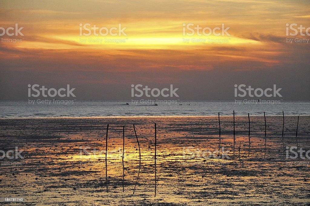 Evening seashore royalty-free stock photo