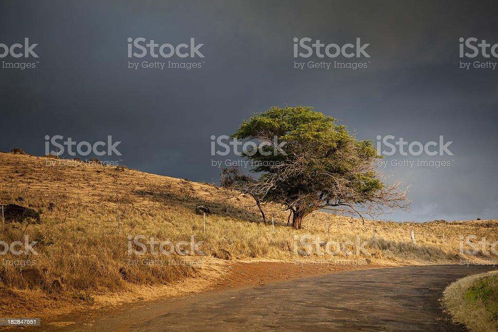 evening storm royalty-free stock photo