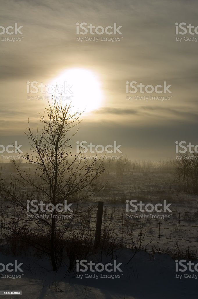 Evening Sun and Winter Fog royalty-free stock photo