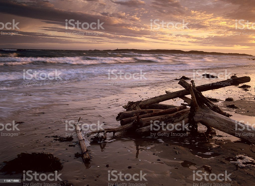 evening sun on the beach royalty-free stock photo