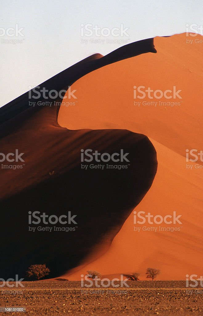 Evening sunlight, Namib Desert royalty-free stock photo