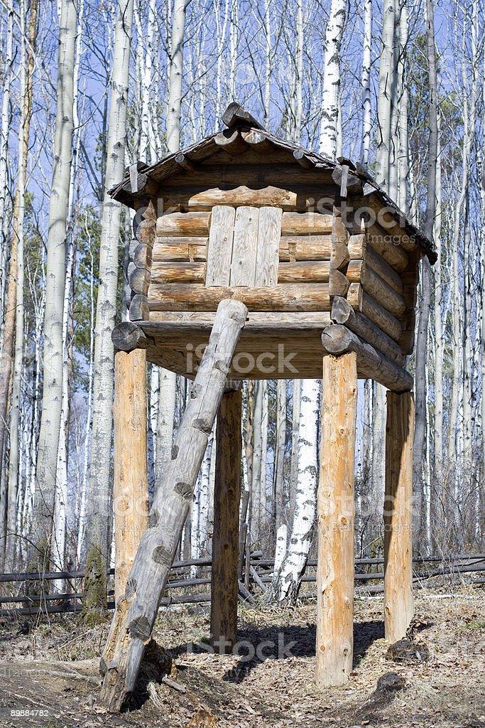Evenk's storehouse on the stumps stock photo
