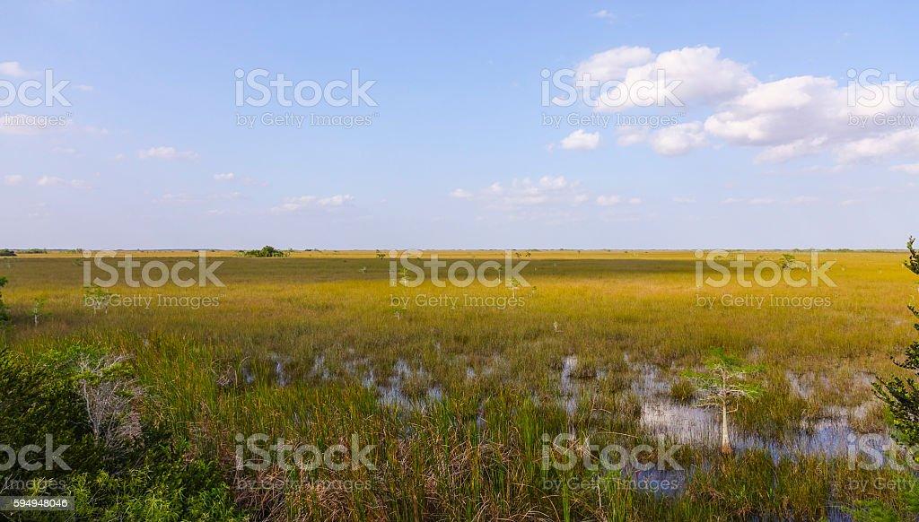 Everglades Nationalpark in Florida Lizenzfreies stock-foto