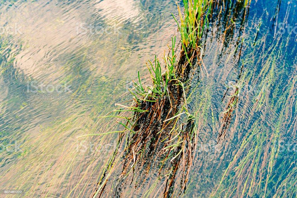 Everglades National Park River of Grass wth Clouds Florida USA stock photo