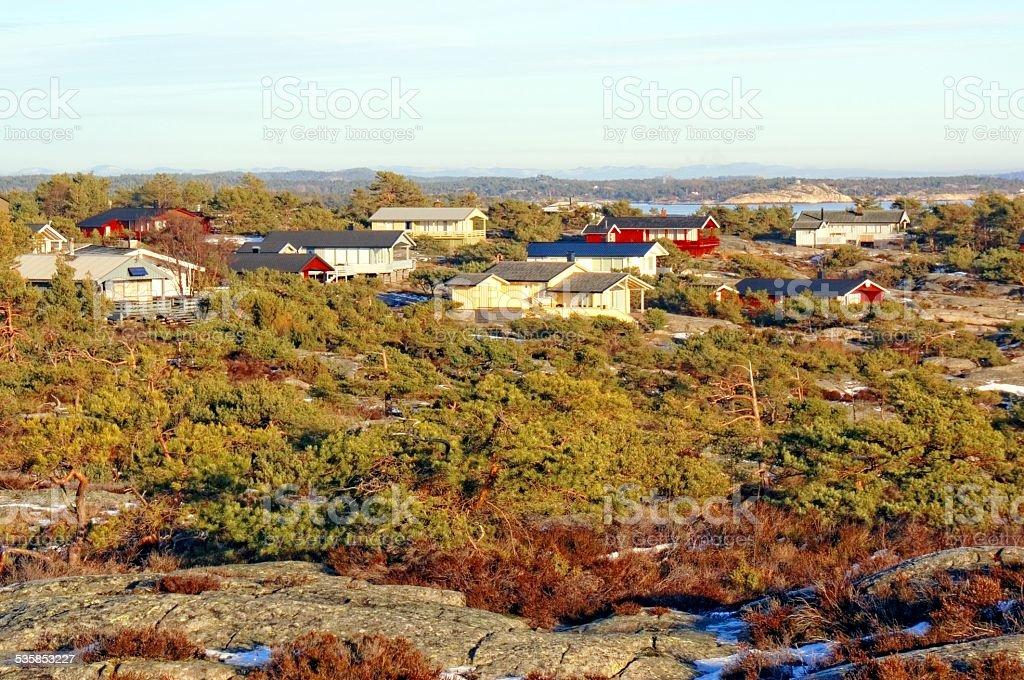 Evergreen vegetation on the camping  rocks stock photo
