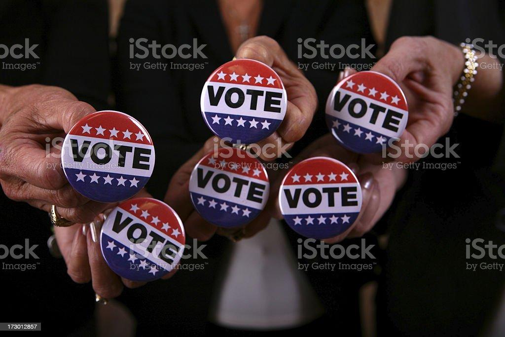 Everyone Vote royalty-free stock photo