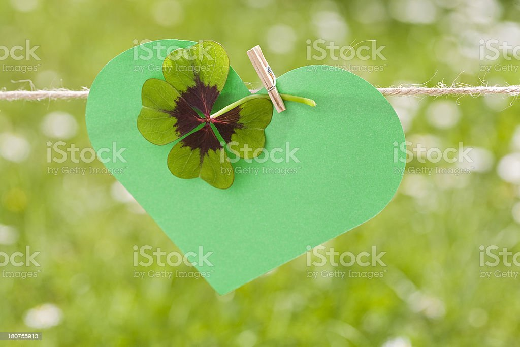 everything is green royalty-free stock photo
