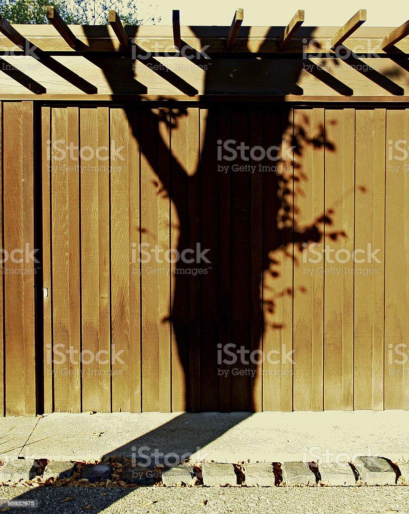 Preuve d'un arbre photo libre de droits