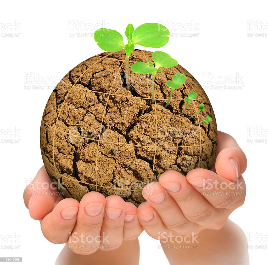 Evolution concept with a plant growing out of parched planet royalty-free stock photo