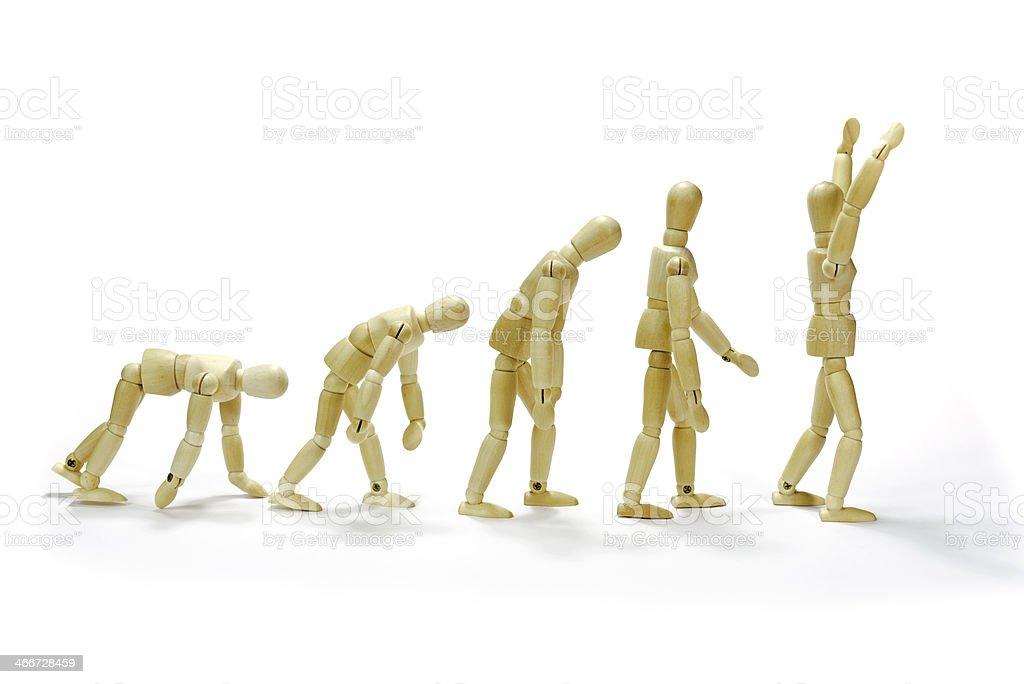 evolution stock photo