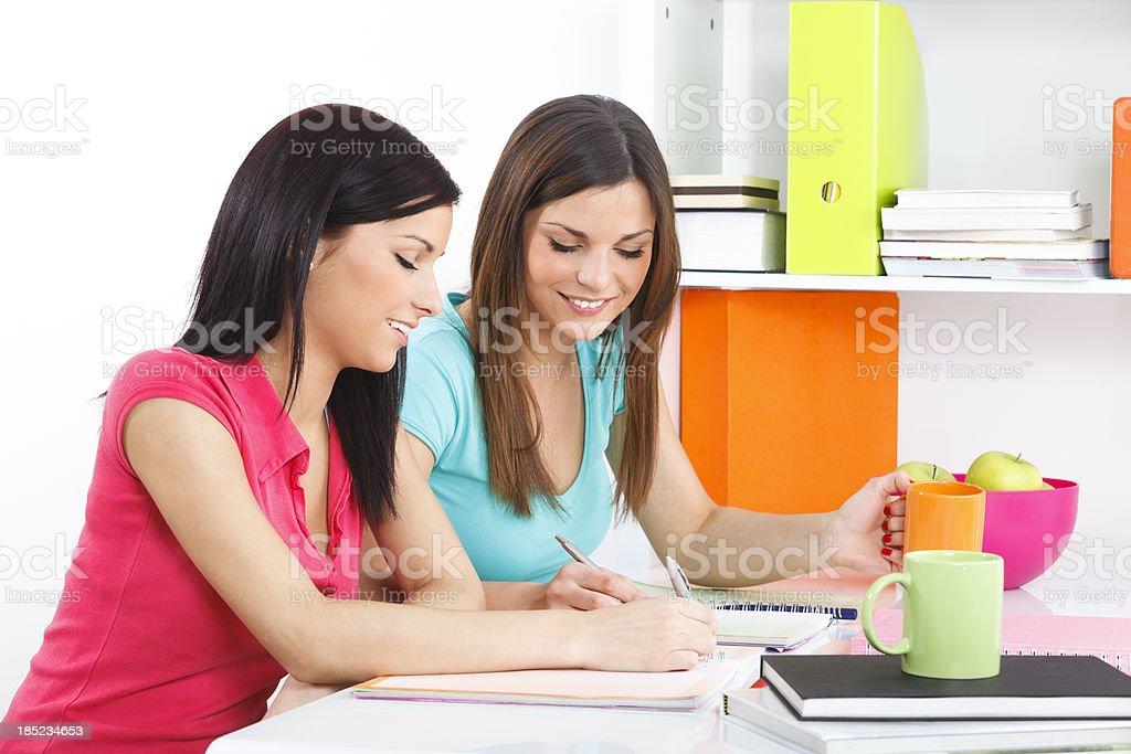 Exam Preparation stock photo
