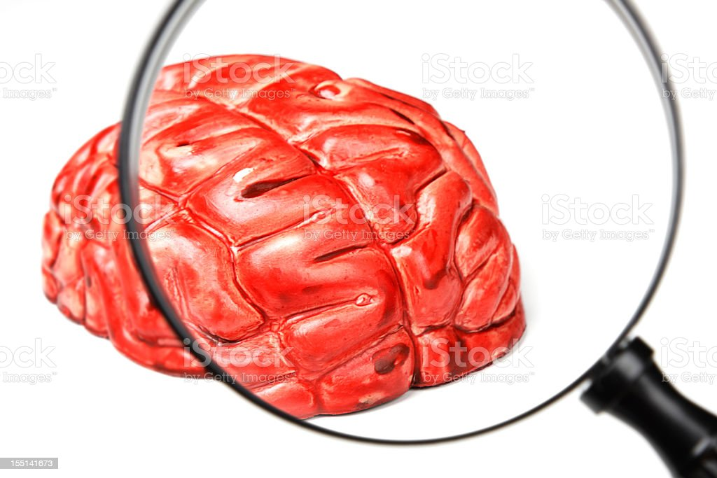 Examining A Brain stock photo