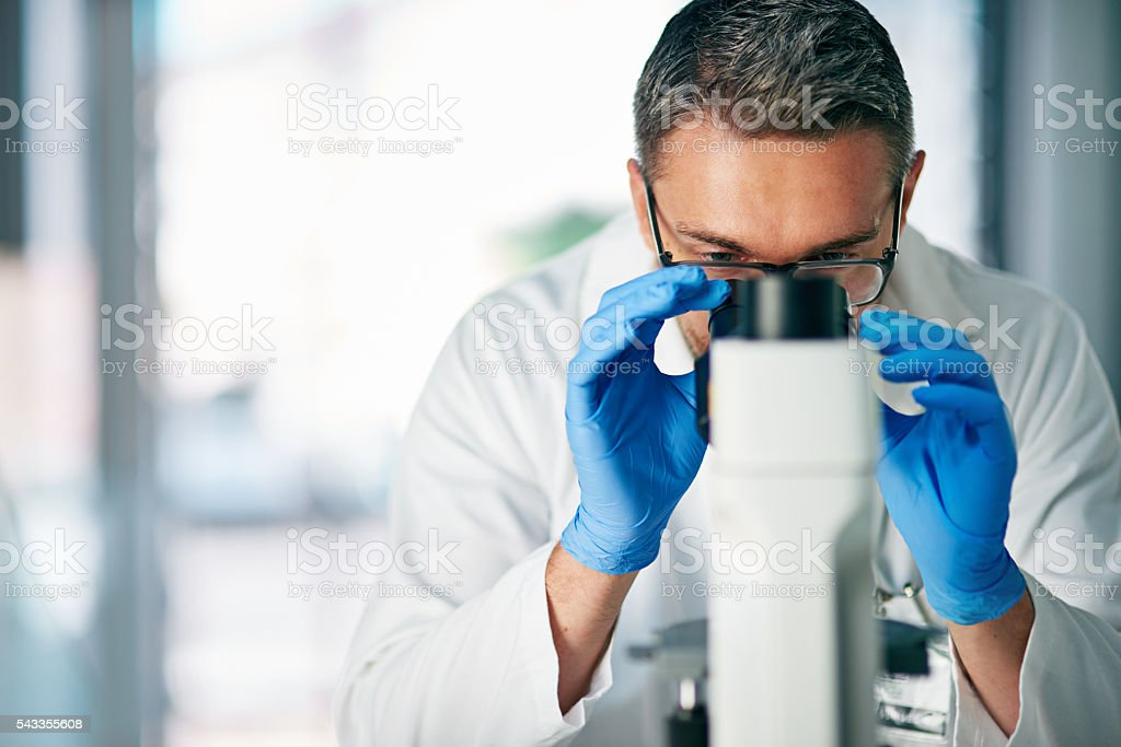 Examining a tissue section for evidence of cancerous cells stock photo