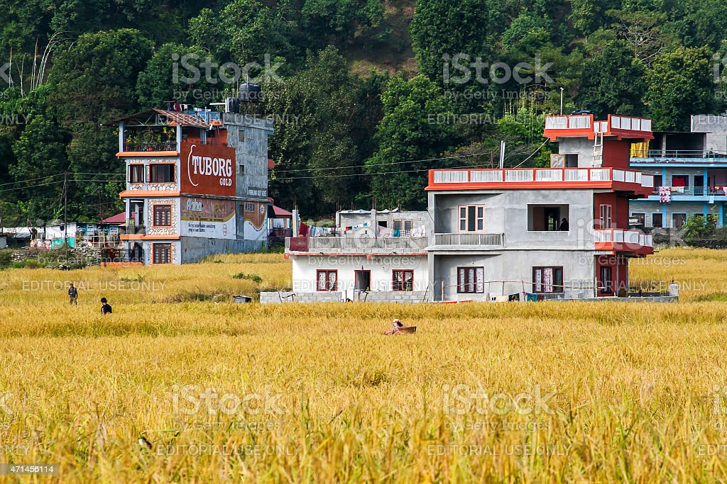 Example of Nepalese architecture stock photo
