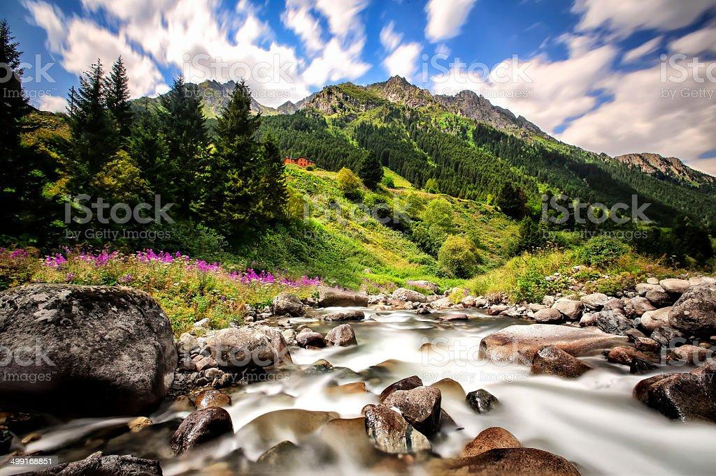Excellent creek stock photo