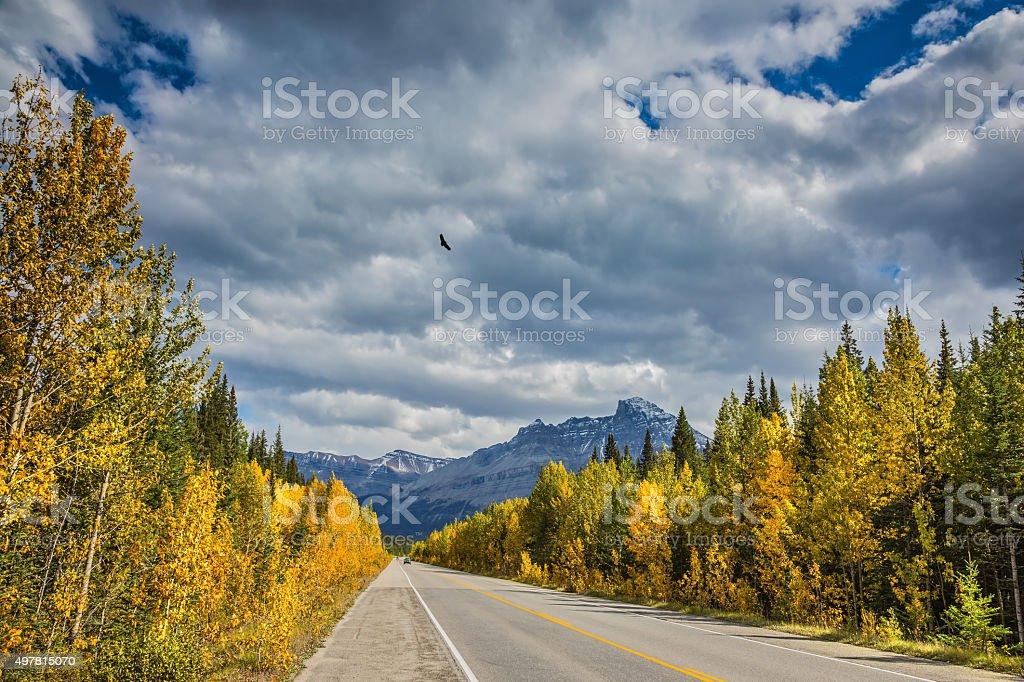 Excellent highway in Canadian Rockies stock photo