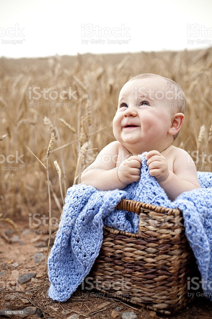Excited baby in basket royalty-free stock photo