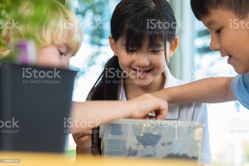 Excited elementary school children studying dirt in science class stock photo