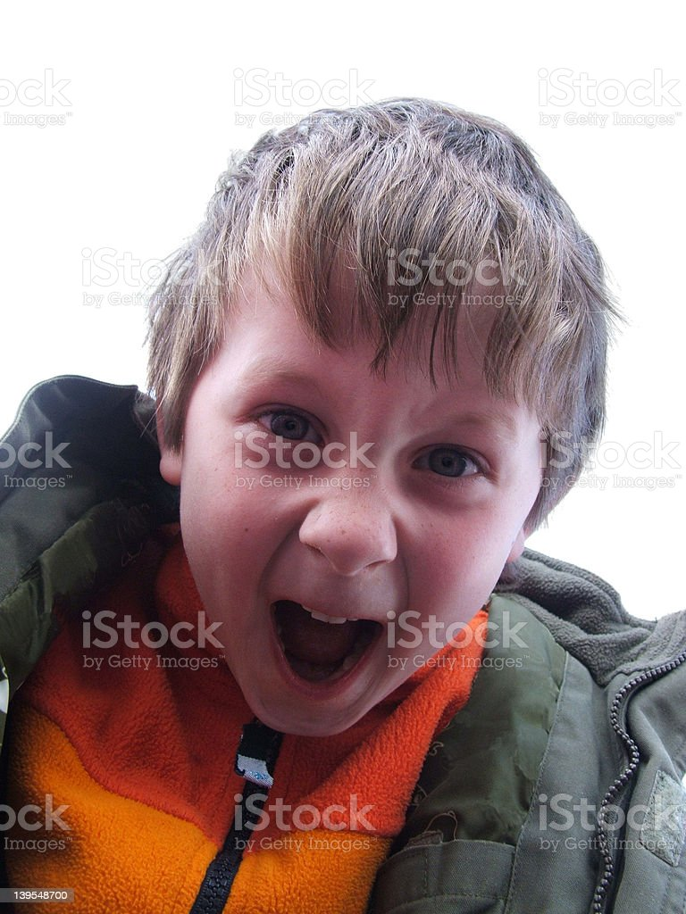 Excited little boy (2) stock photo