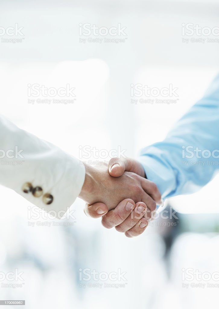 Executives shaking hands royalty-free stock photo