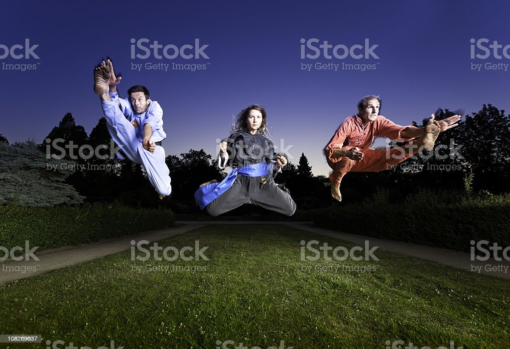exellent martial artists royalty-free stock photo