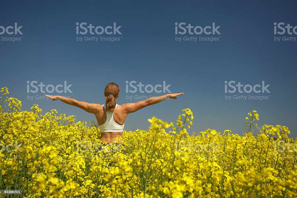exercising in rape field royalty-free stock photo