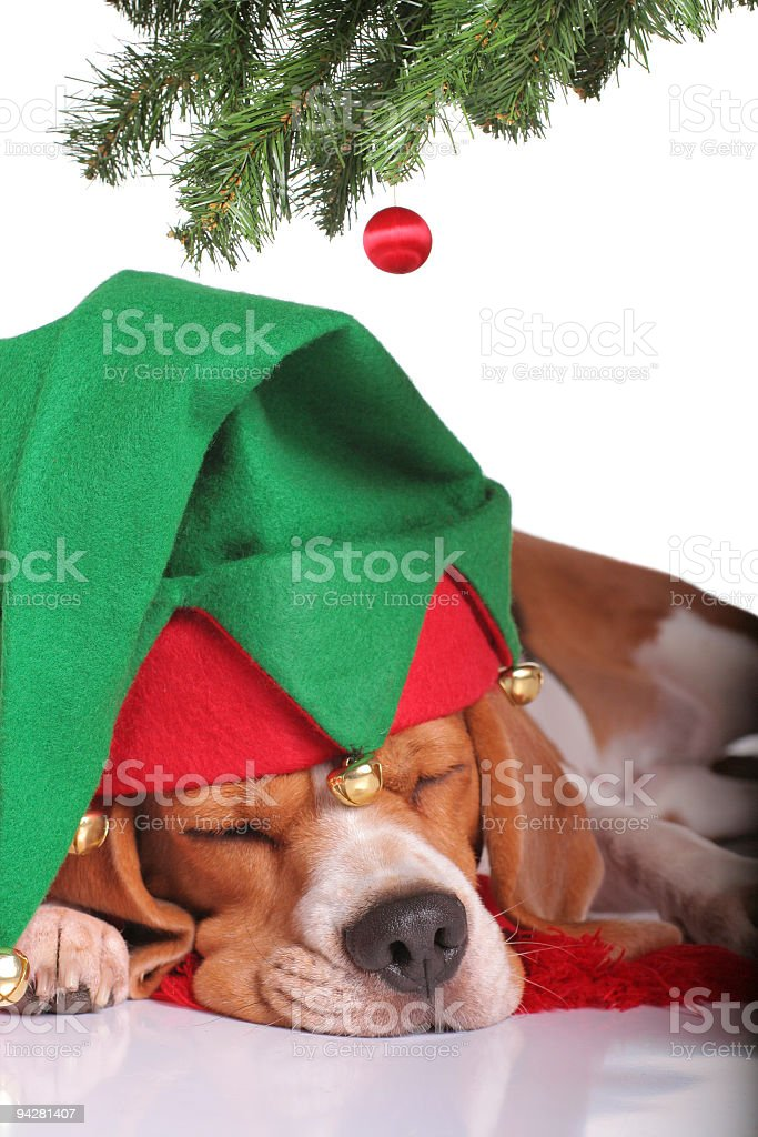 Exhausted Elf royalty-free stock photo