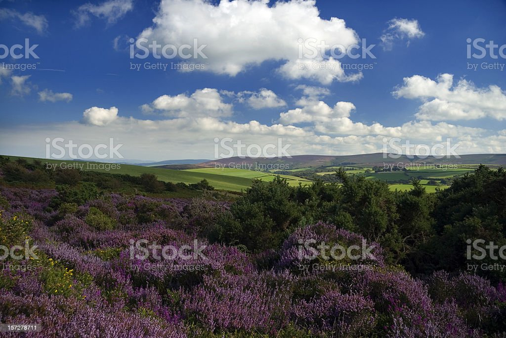 Exmoor National Park stock photo