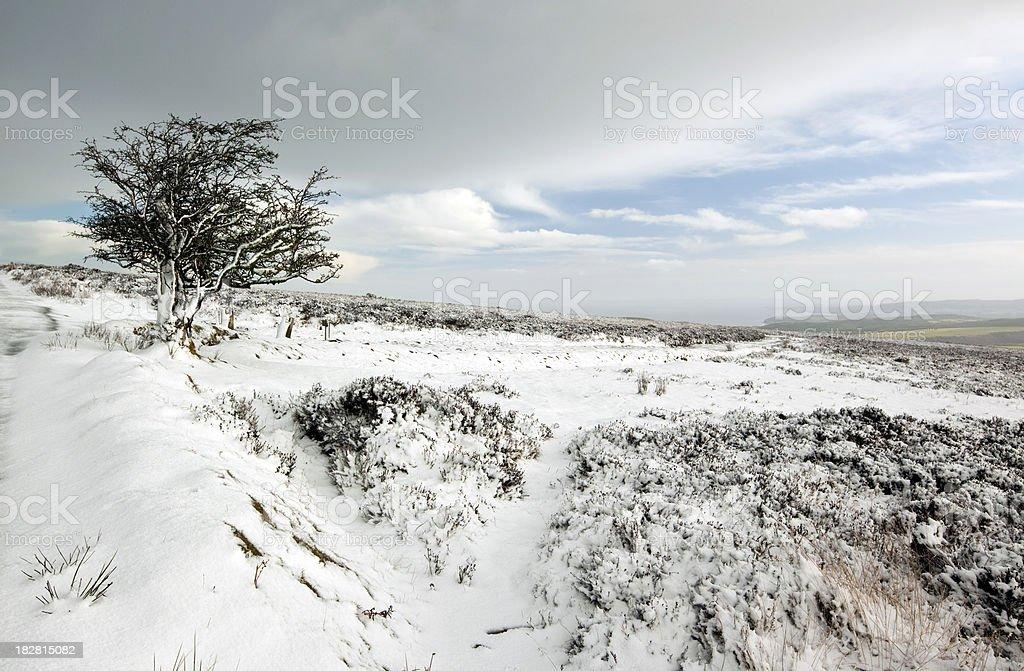 Exmoor Winter stock photo
