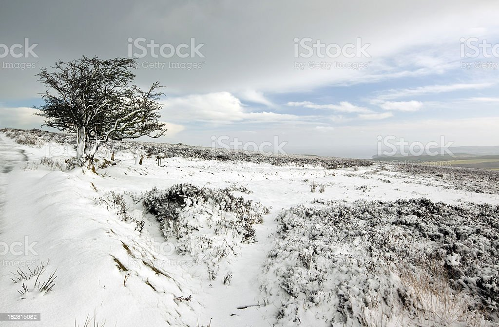 Exmoor Winter stock photo