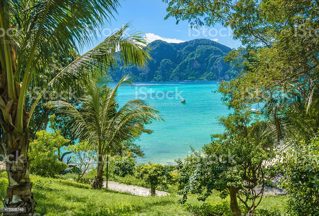 Exotic bay with boats and palm trees, Thailand stock photo
