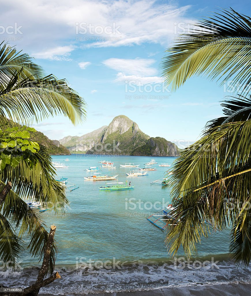 Exotic beach royalty-free stock photo