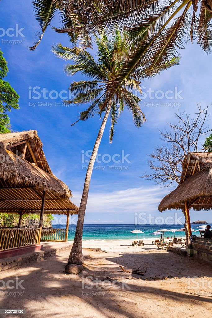Exotic beech view with palm trees on tropical sunny island stock photo