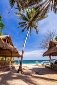 Exotic beech view with palm trees on tropical sunny island