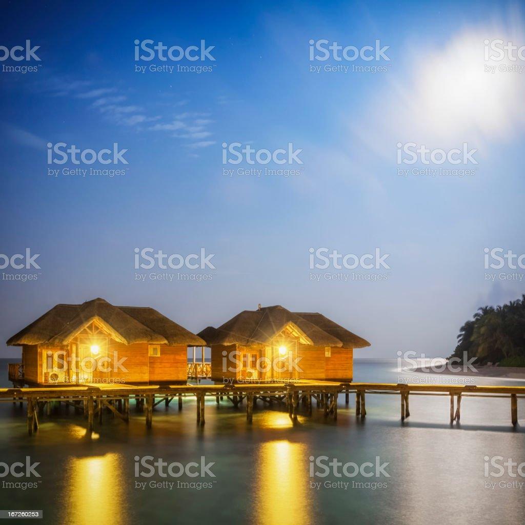 Exotic Full Moon Night stock photo