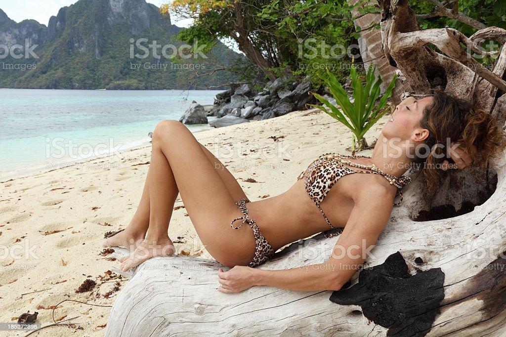 Exotic royalty-free stock photo