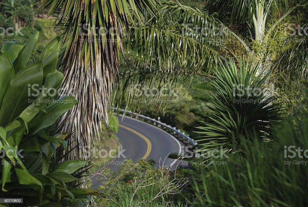 exotic roadtrip stock photo