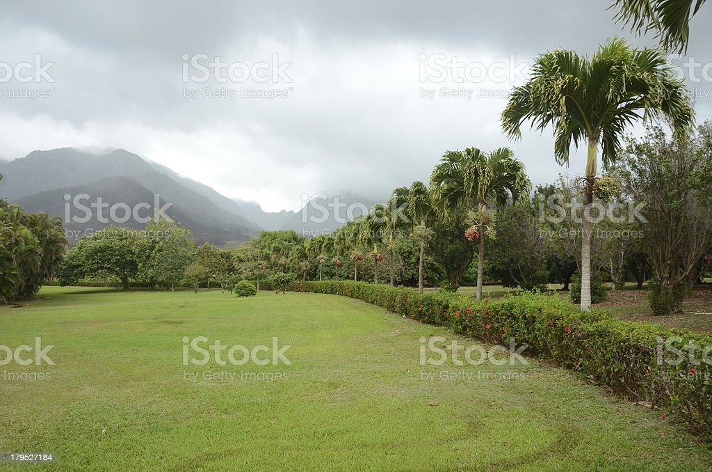 Exotic scenery from Maui, Hawaii royalty-free stock photo