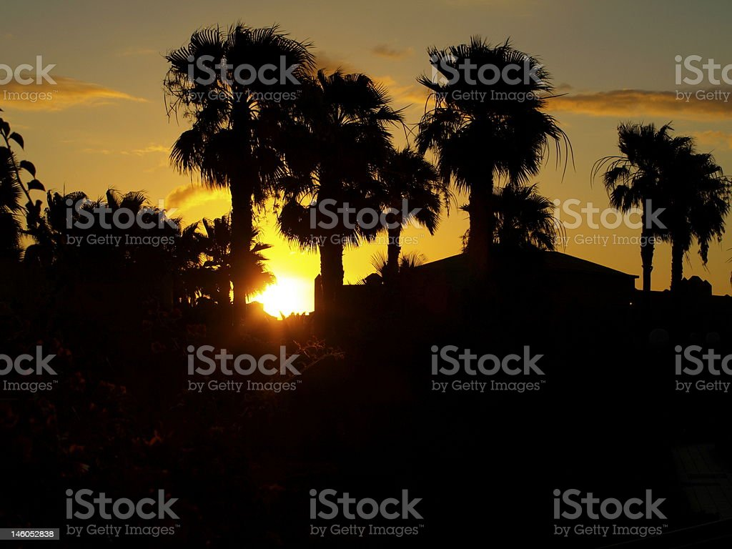 Exotic Sunrise royalty-free stock photo