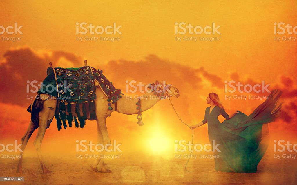 exotic sunset stock photo