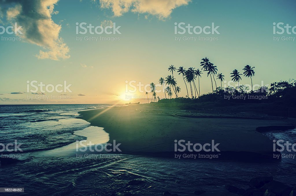 exotic tropical sunset royalty-free stock photo