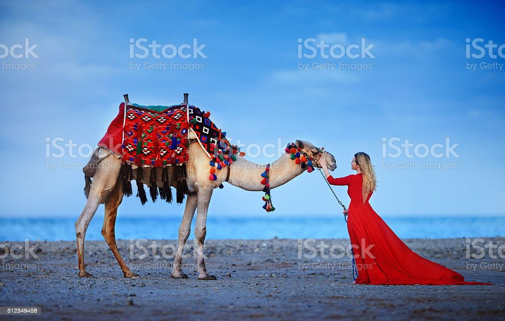 exotic woman near camel stock photo