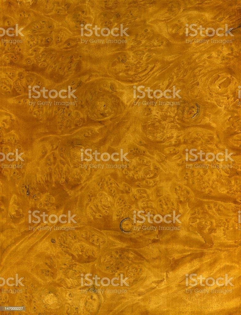 Exotic Wood Veneer royalty-free stock photo
