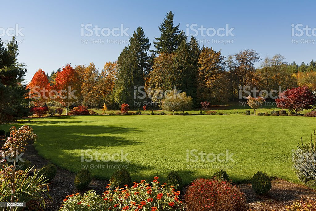 Expansive Lawn stock photo