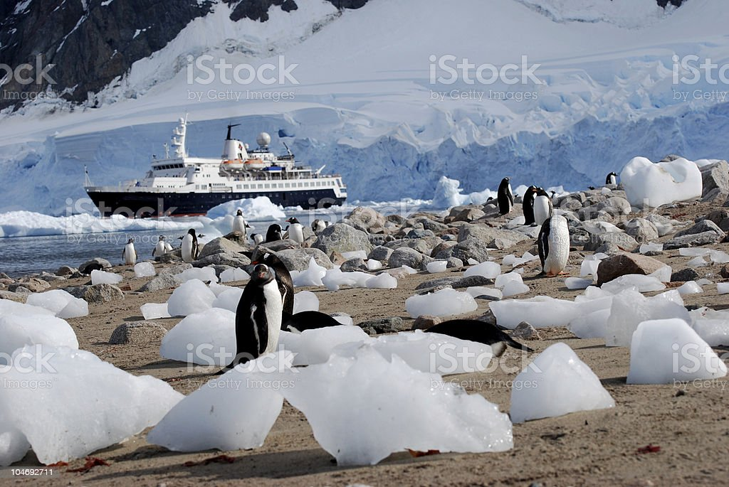 Expedition Ship in Antarctic Waters stock photo