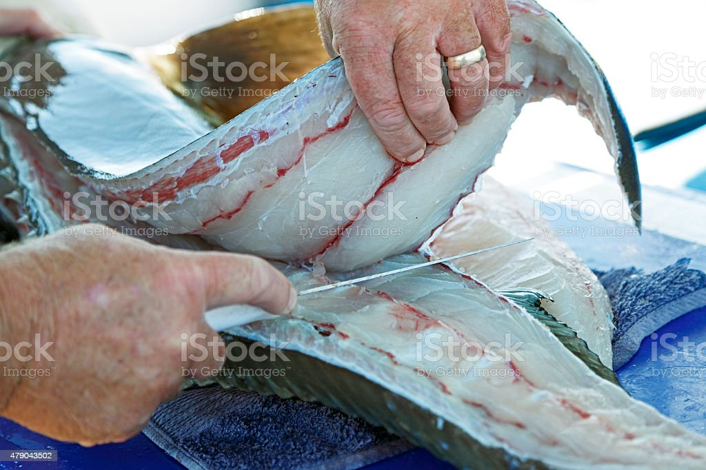 Experienced hands filleting large ling fish 3 stock photo
