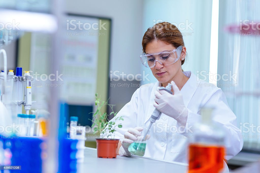 Experiment in medical laboratory stock photo