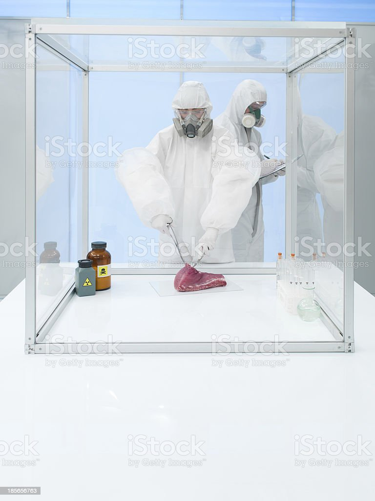 experimenting on raw meat in sterile chamber royalty-free stock photo