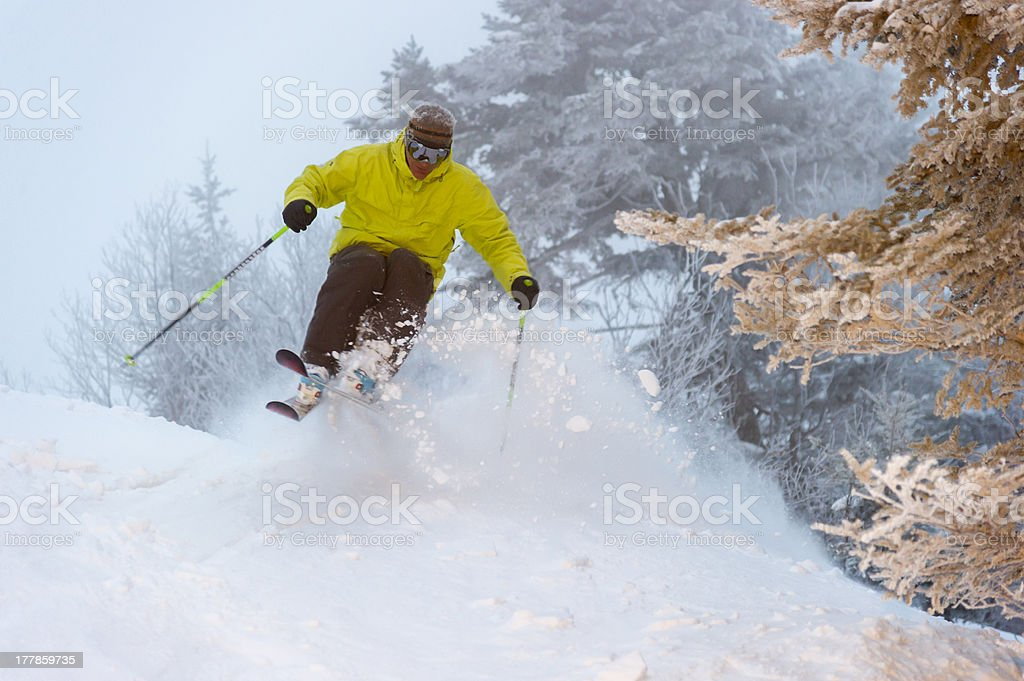 Expert skier on a powder day. stock photo